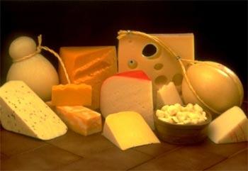 Сырная диета