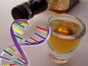 Можно ли закодироваться от алкоголизма